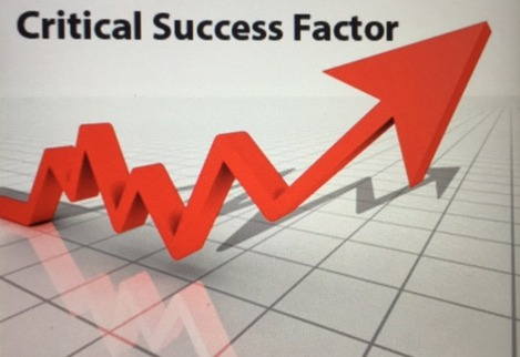 Analyze the Critical Success Factors: Build a Business Team